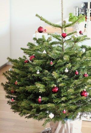 Greentree geschmückter Christbaum
