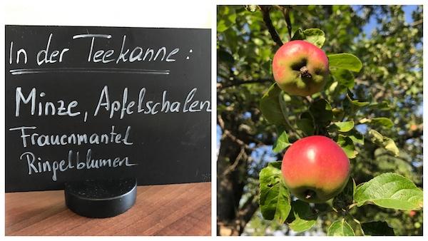 Selbstgemachter Apfeltee