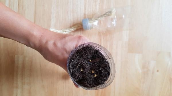 DIY Selbstbewässerungstopf - Erde und Samen hinzufügen