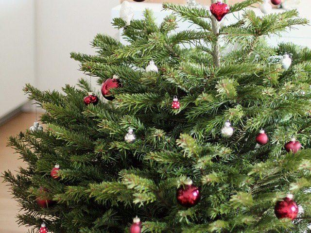 Greentree Christbaum geschmückt