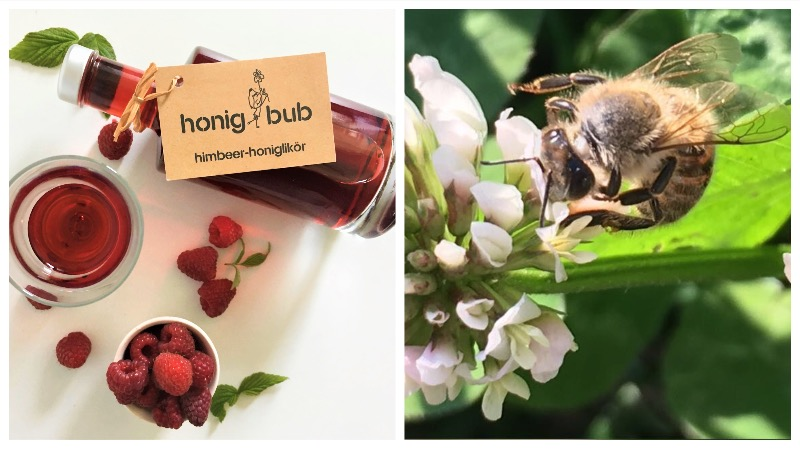 Honiglikör von honigbub aus dem Burgenland